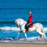 horse-riding-Gandia