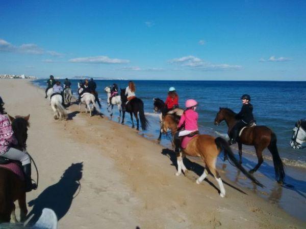 Horse-riding- Gandia-Beach
