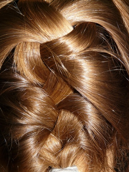 Hairstyles For Long Hair For School Easy Page 15