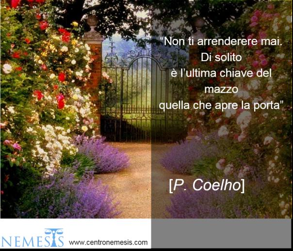 #149-Coelho.png