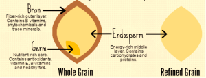 Why Whole Grains? – Food & Wellness