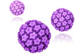 hpv wirus brodawczaka ludzkiego