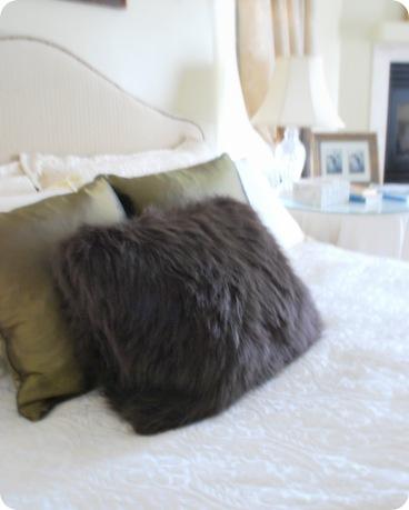 accent rug throw pillow