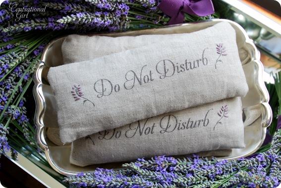 cg do not disturb pillows
