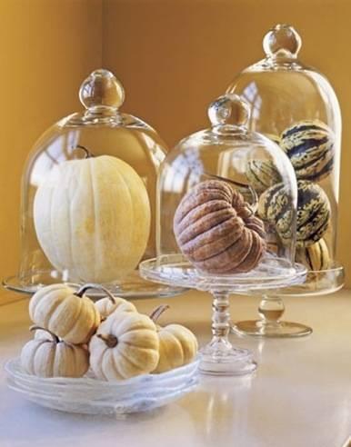 pumpkins under glass country living