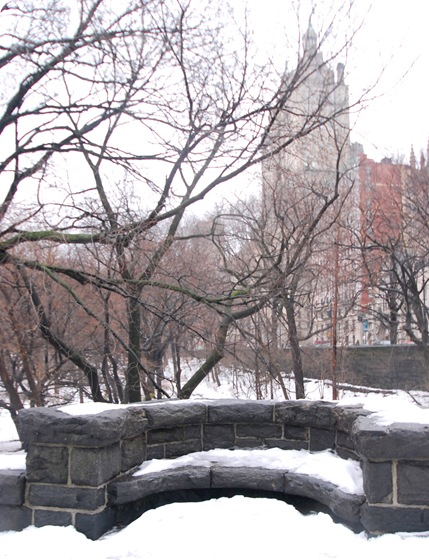 seat in central park