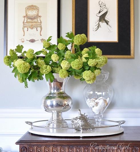 cg viburnum and vase