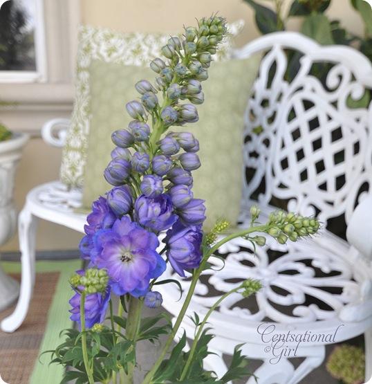blue delphinium on porch