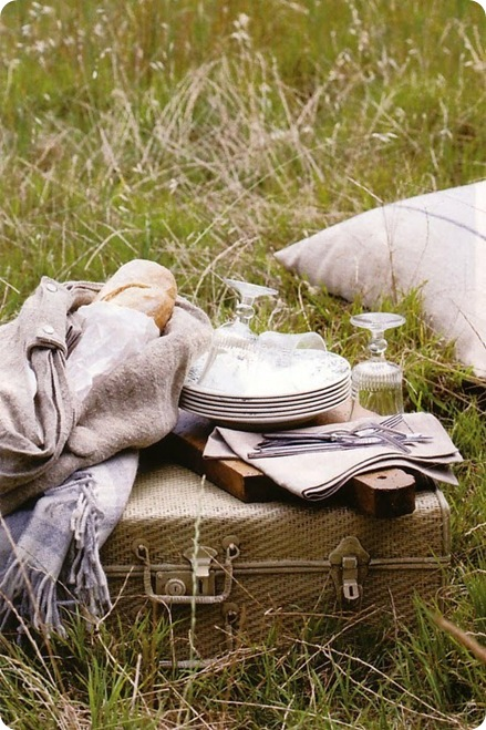suitcase picnic