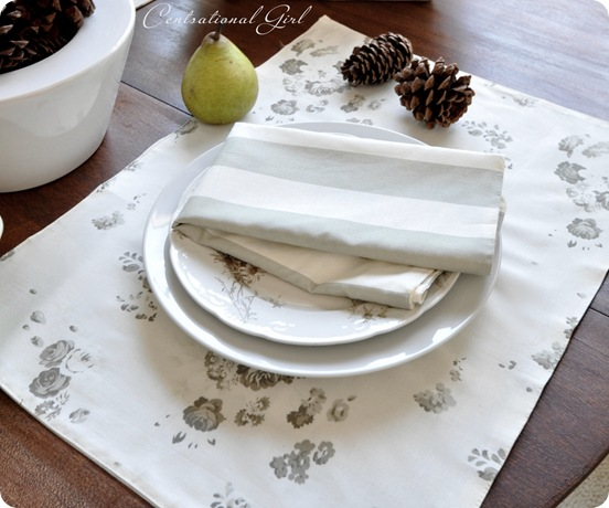 reversible napkin placemat cg