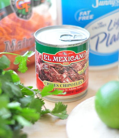 chipotle pepper in adobo sauce