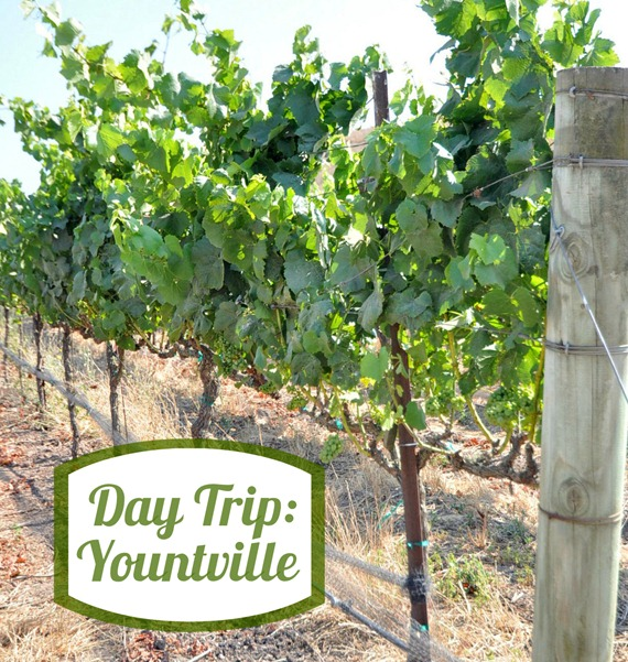 day trip yountville