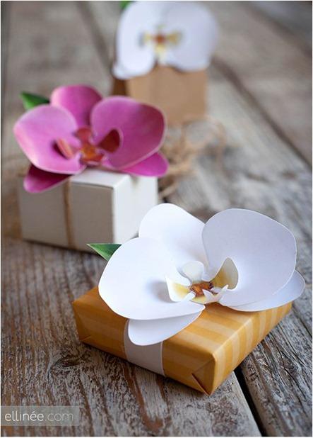 paper orchid ellinee