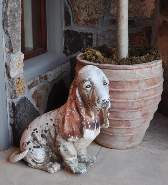 beauregard beagle