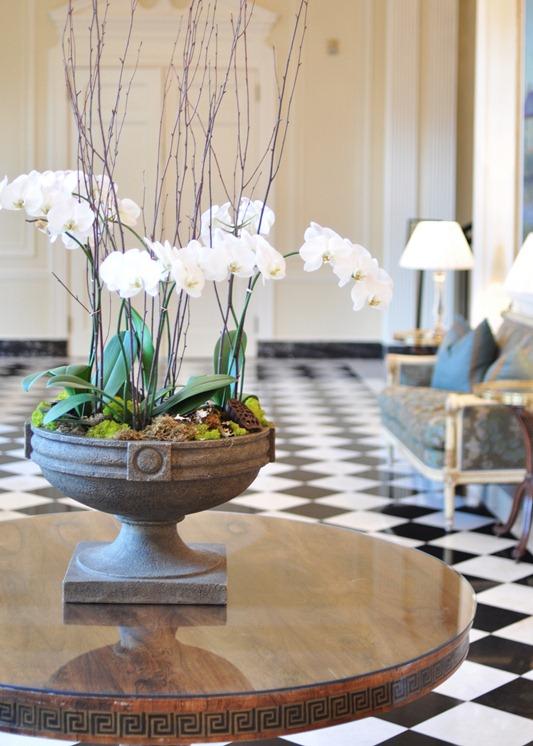 orchids in urn duke mansion
