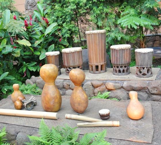 aulani drums