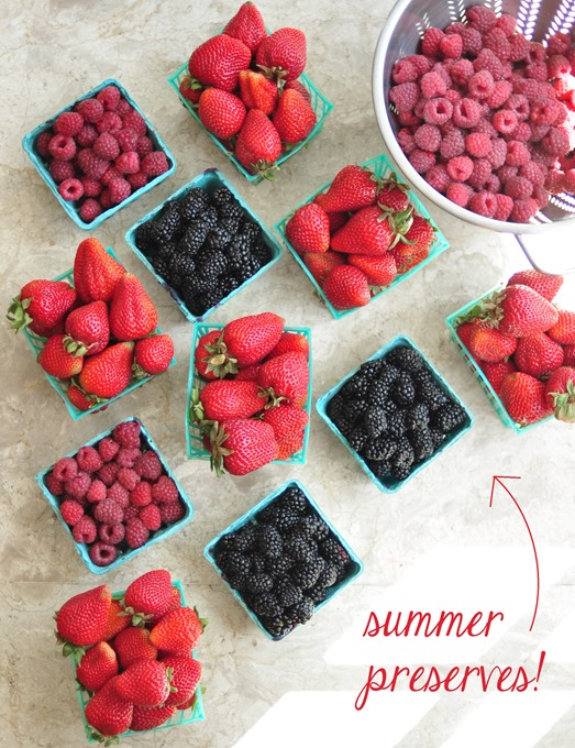 summer preserves ingredients