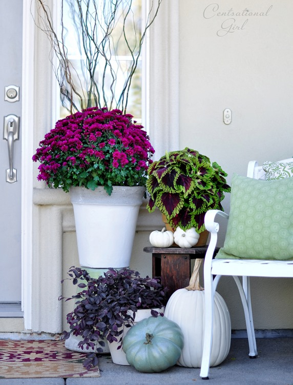 fall porch mums
