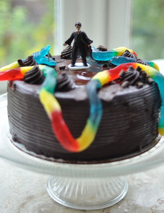 20 harry potter party ideas