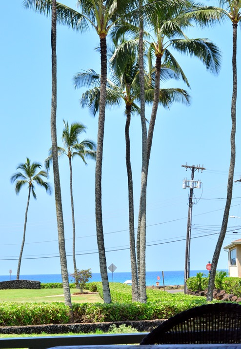 view of poipu beach