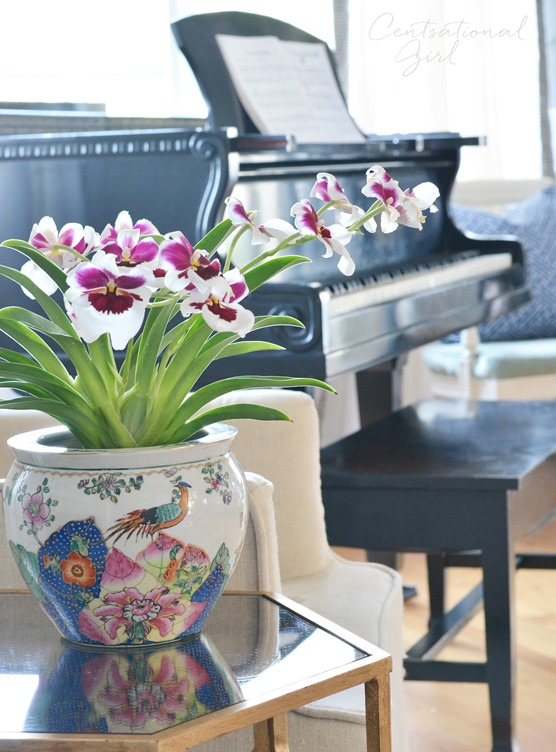 chinoiserie pot with orchid