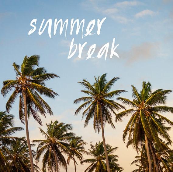 summer break palm trees