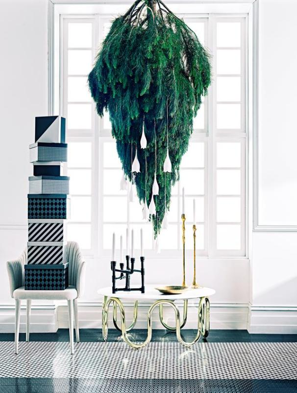 upside down pine tree