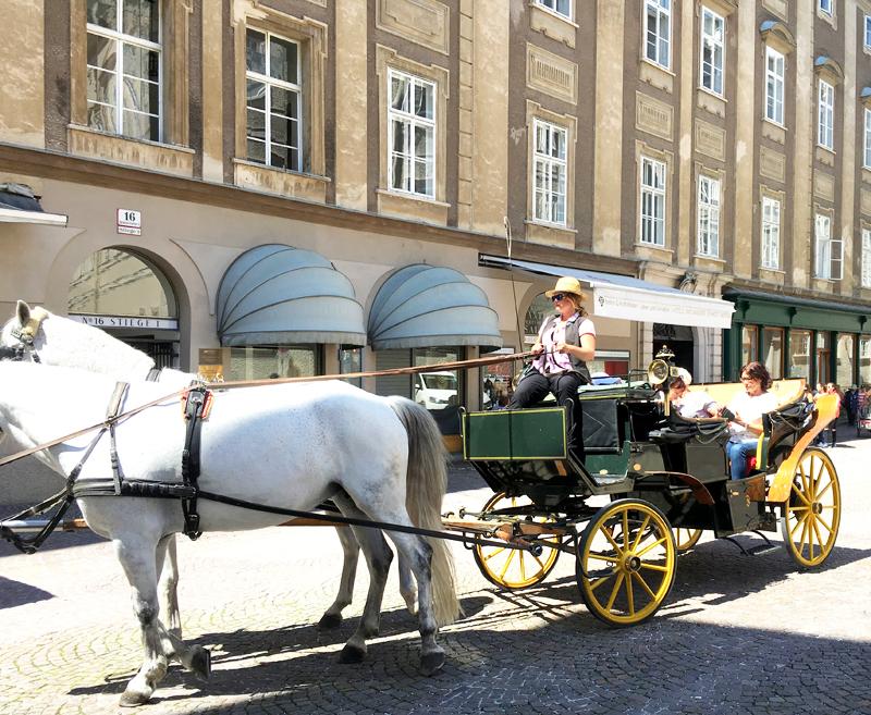 salzburg carraige ride