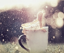 cup_splash_caramel_bokeh_flare_grass_54219_1920x1080