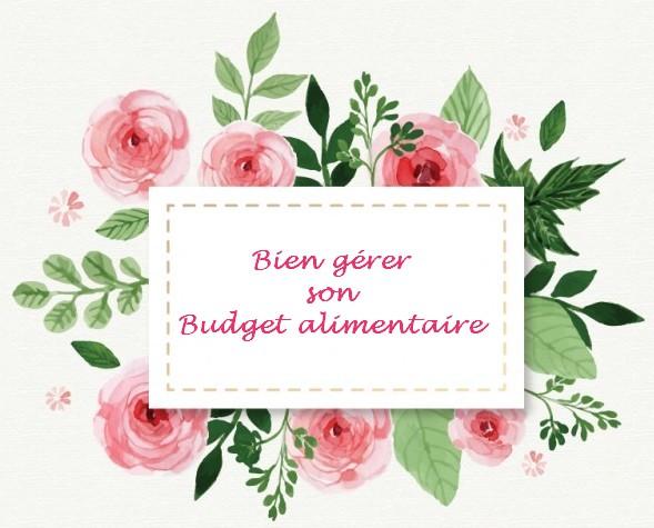 Bien gérer son budget alimentaire ~ astuces et conseils pour s'organiser pour bien gérer son budget alimentaire, bien manger et faire des économies.