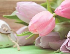 Tulipes roses et petit cœur en tissu, 10 choses que j'ai aimées en Mars 2014