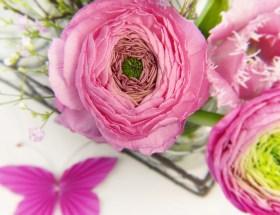 Le bouquet du dimanche #14 : un peu de tout, de rien et surtout un petit bouquet à partager en toute amitié pour célébrer le week-end ♥ #VivreMieux