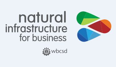 Natural Infrastructure for Business logo