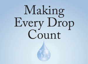 Making Every Drop Count: An Agenda for Water Action