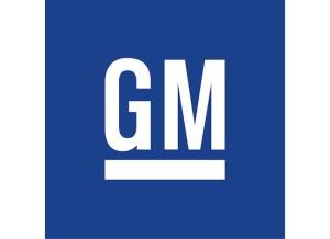 Detroit Hamtramck a General Motors Case Study