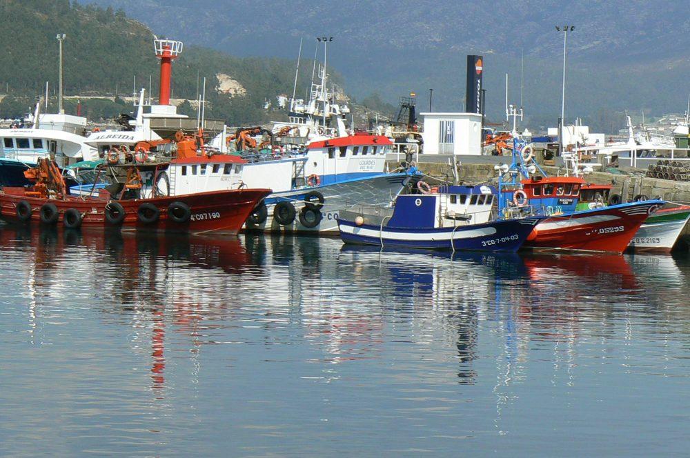 La UE junta en un reglamento 30 normas técnicas sobre la pesca