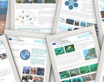 Científicos europeos desarrollan herramientas para comprender la biodiversidad marina