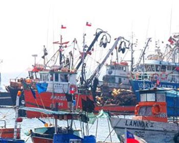 Exigen a barcos pesqueros llevar cámaras a bordo
