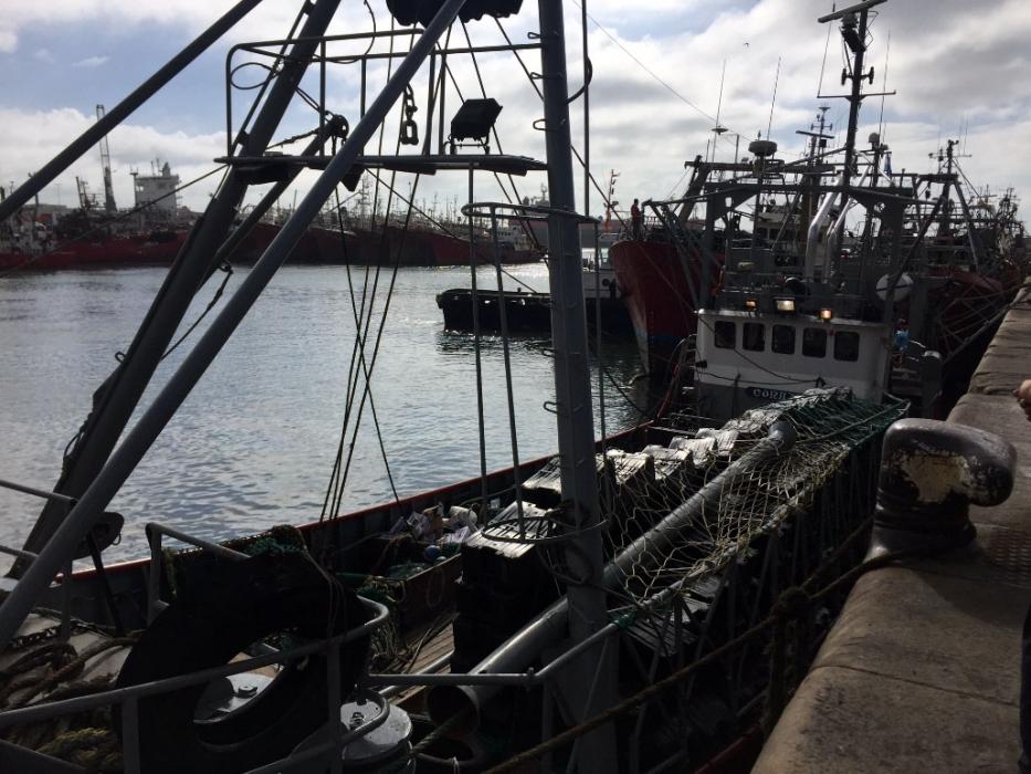 Merluza: fijan veda de otoño en Zona Común de Pesca