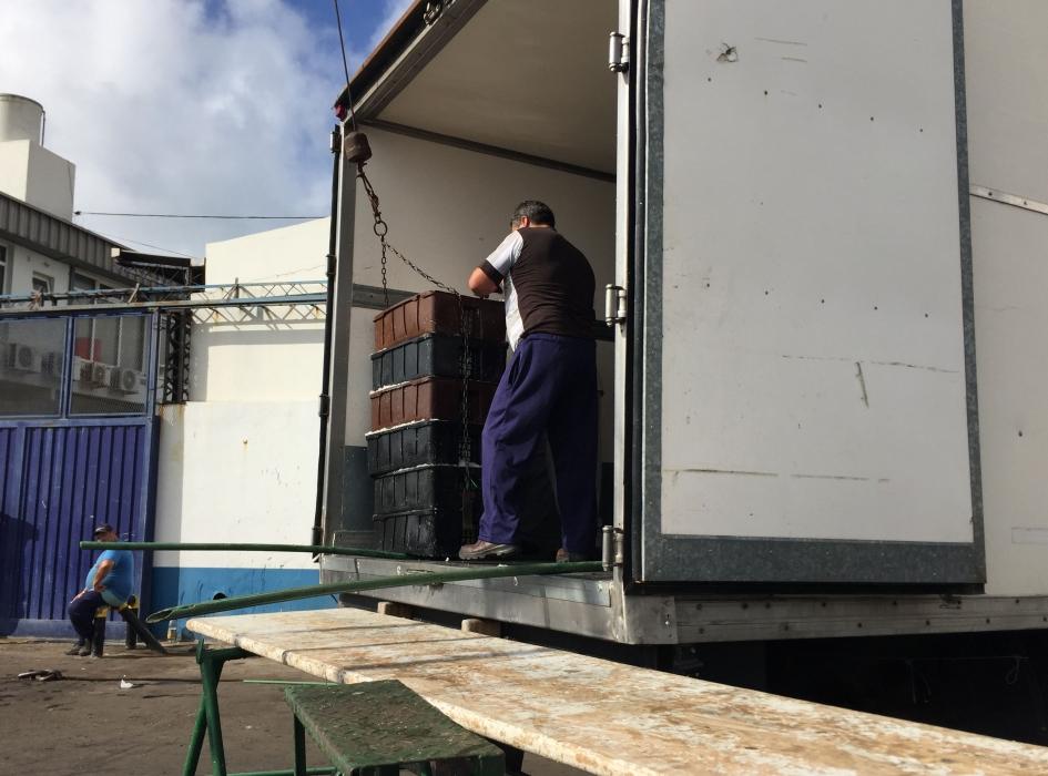 El Consejo introdujo cambios en la administración de merluza