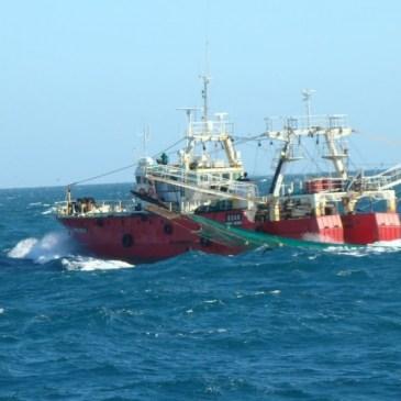 Definieron los barcos que realizarán la prospección de langostino