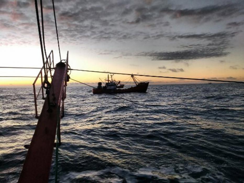 La temporada de langostino en aguas nacionales termina el 31 de octubre