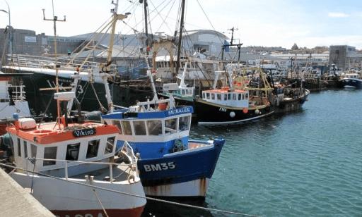El sector británico se implica en la gestión de Areas Marinas Protegidas