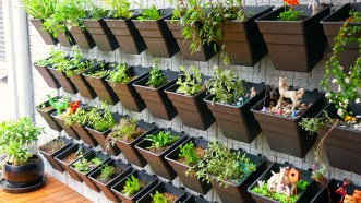 An Awesome Herb Wall Garden Family Garden Life in 20+ How To Build Your Own Vertical Garden With A Pallet