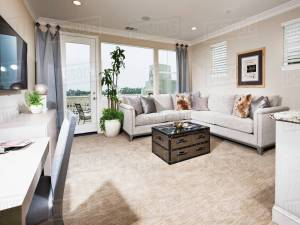 Contemporary Living Room With Sectional Sofa And Carpet Flooring At Home Stock Photo with ucwords]