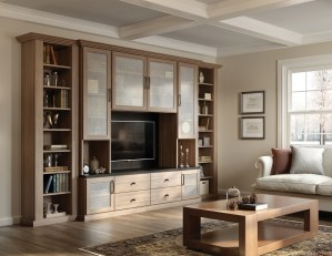 Family Room Cabinets Storage Solutions California Closets within [keyword