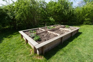 How To Build A Raised Garden Bed Planning Building And Planting regarding ucwords]