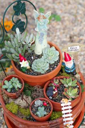 How To Use Succulents To Make A Beautiful Fairy Garden For Your Yard pertaining to 20+ How To Build Your Own Vertical Garden With A Pallet