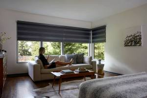 Motorized Options Custom Blinds And Shades Blinds To Go with regard to ucwords]
