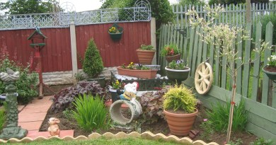 Rustic Garden Design Ideas As Rustic Landscaping Ideas Pictures throughout ucwords]